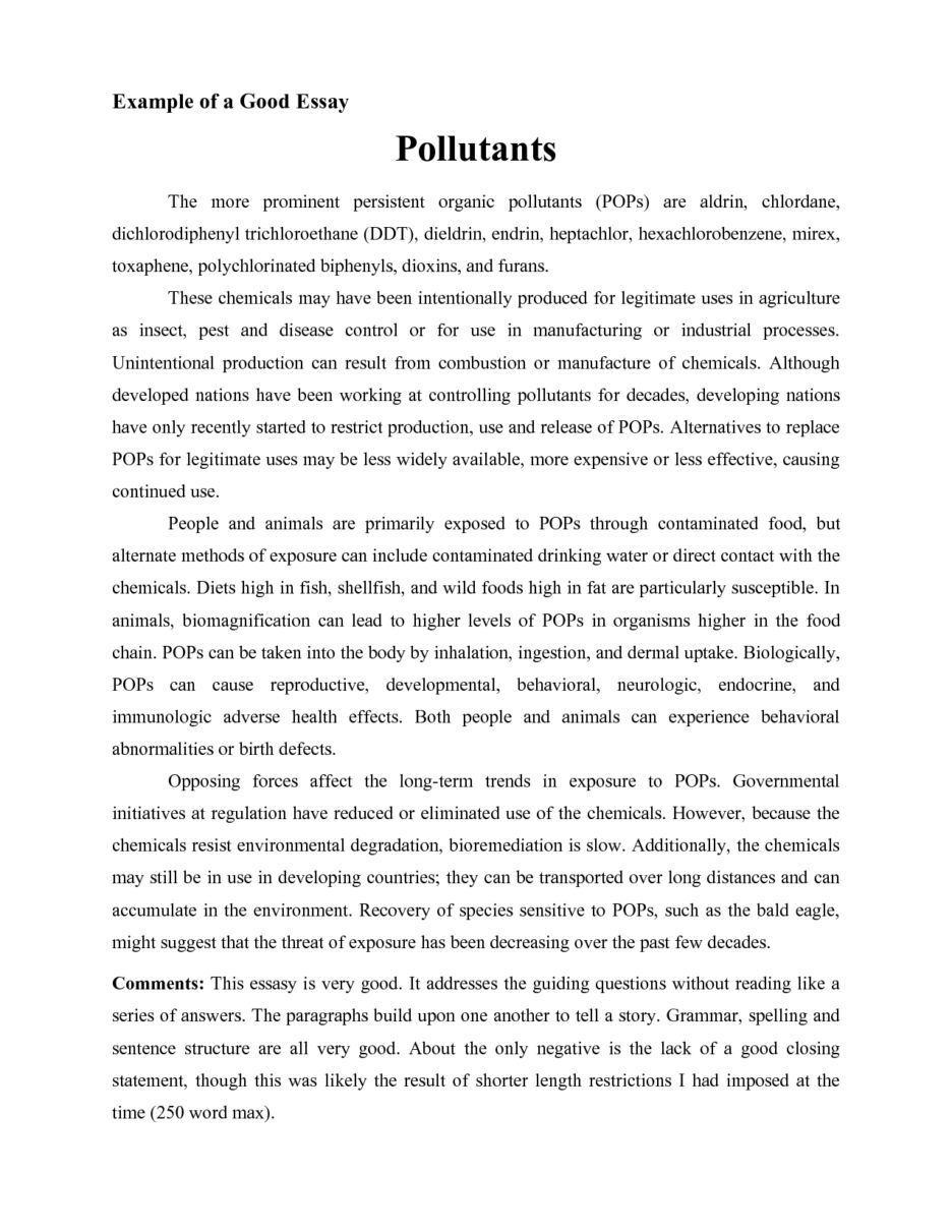 Example Of Essay Writing Good Essay Writing Example Koran Sticken Co
