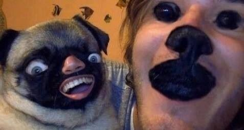 Woman And Pug Swap Faces Strange Very Strange