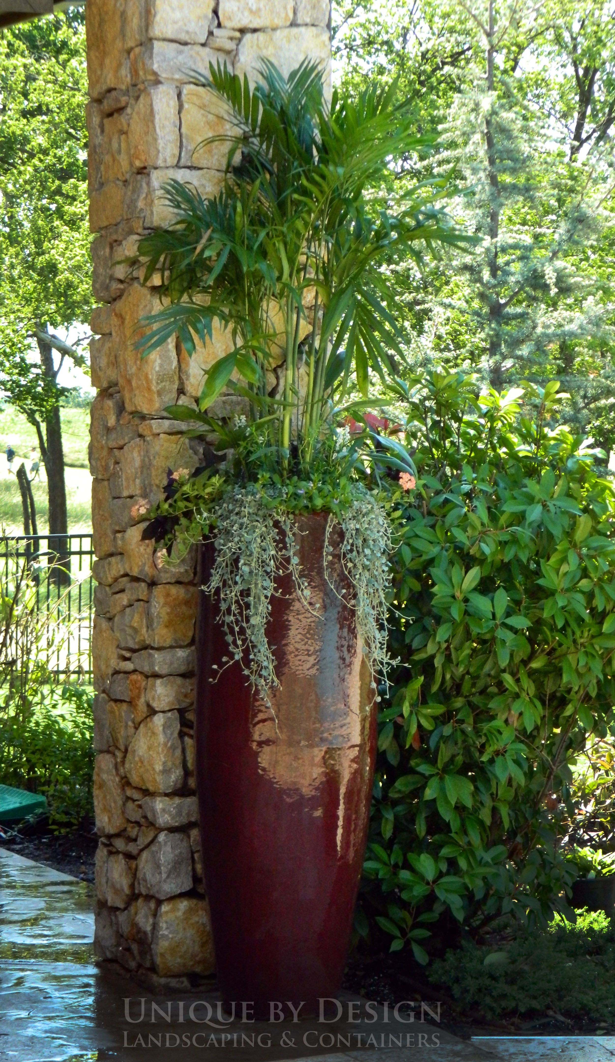 Nice Combo Of Tall, Spiller And Thriller In A Tall Pot. This Is A
