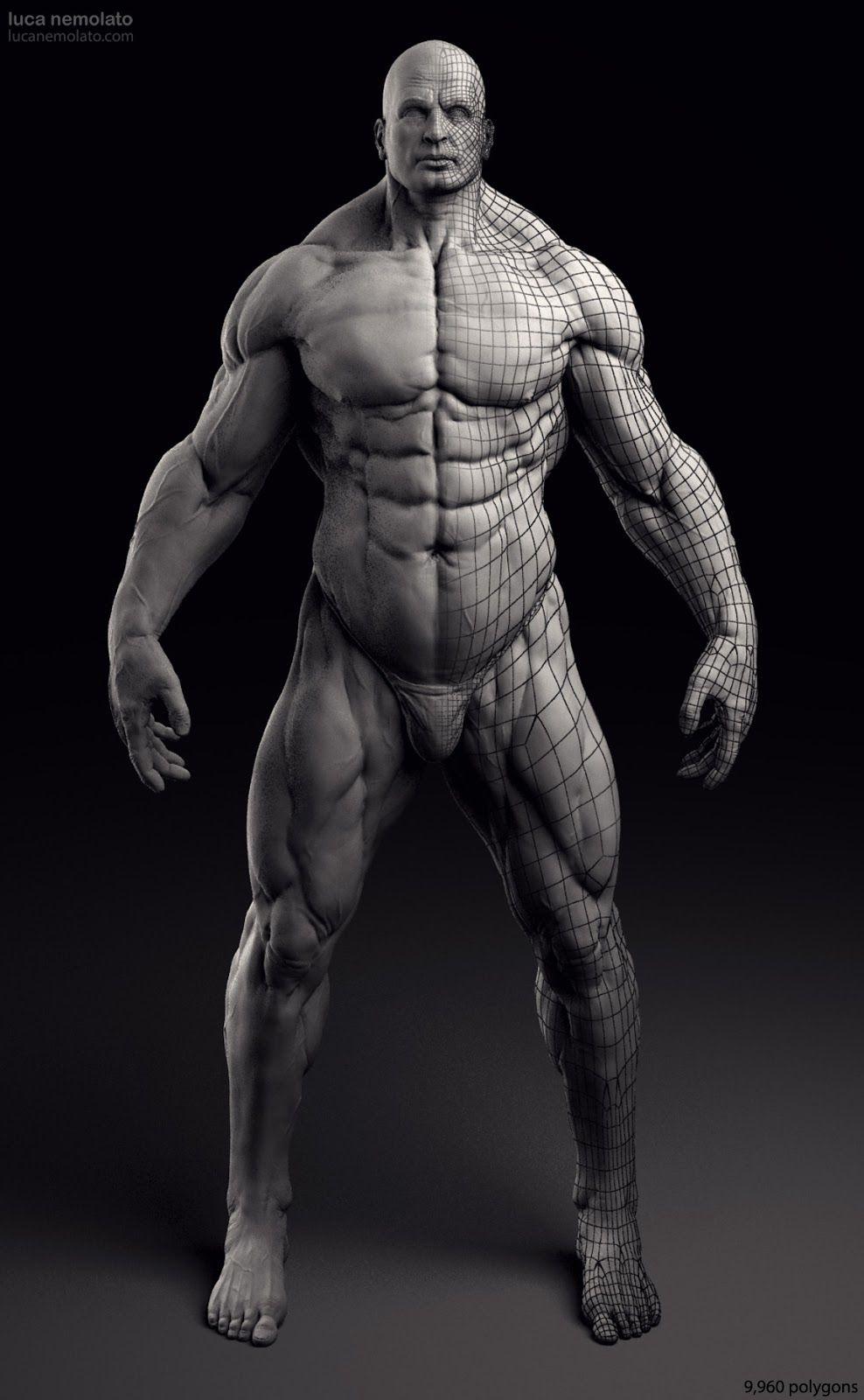 Extreme Bodybuilder - vray renders | Designs. | Pinterest | Anatomía ...