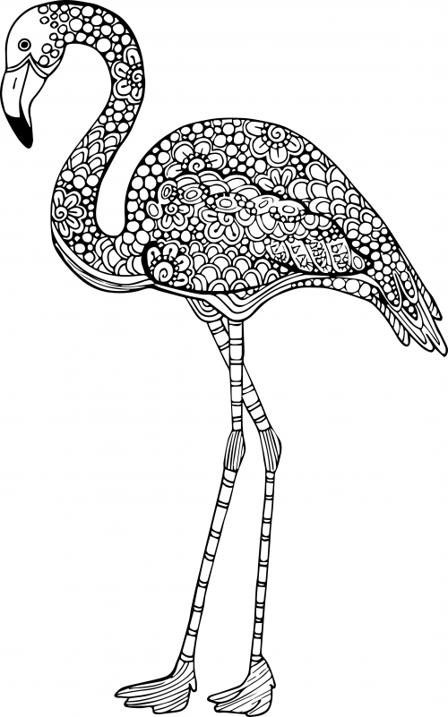 - Advanced Animal Coloring Page 13 - KidsPressMagazine.com Bird Coloring  Pages, Animal Coloring Pages, Flamingo Coloring Page
