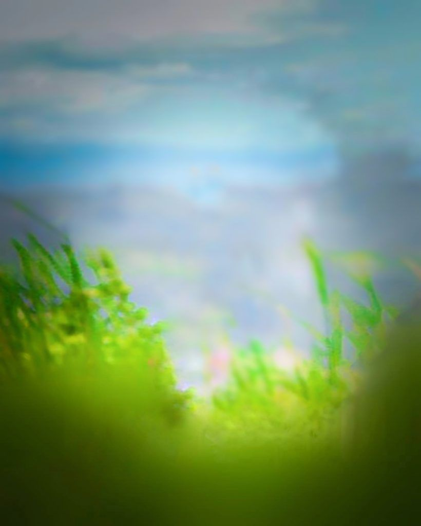 Hd Backgrounds Download For Cb Editing Picsart Cb Background Blur Photo Background Dslr Background Images Nature Backgrounds