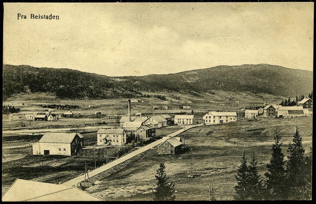 BEITSTAD i Steinkjer kommune i Nord-Trøndelag fylke. Oversikt en hus langs hovedveien  utg T. Næss. Datert 1925