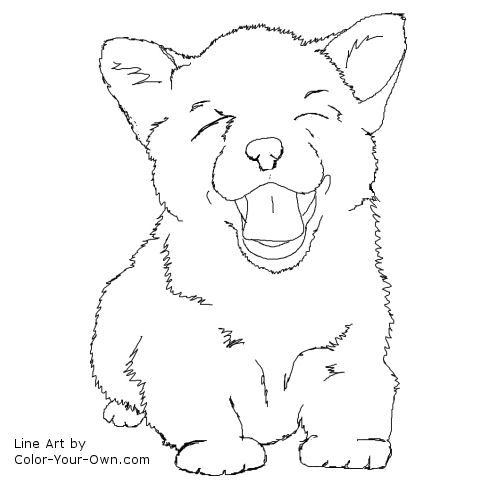 Corgi Puppy Line Art