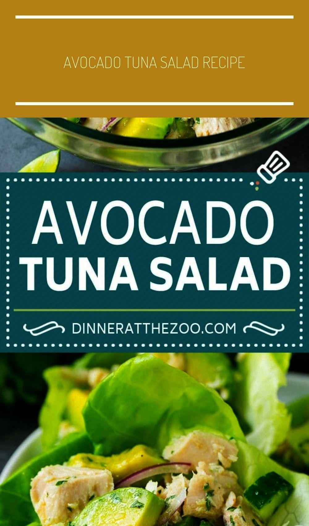 Salad Recipe | Avocado Salad - Dinner at the Zoo Recipes - salad salmonAvocado Tuna Salad Recipe |