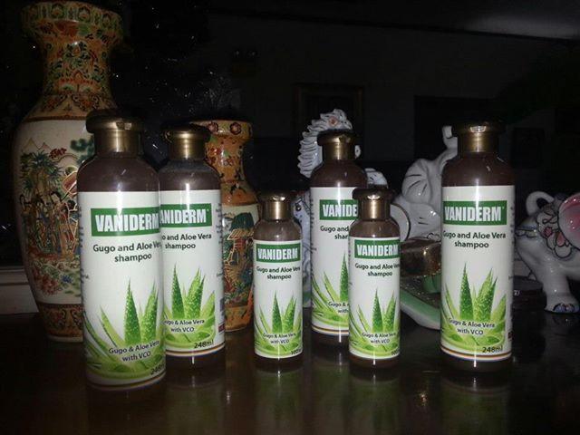 how to use gugo bark as shampoo