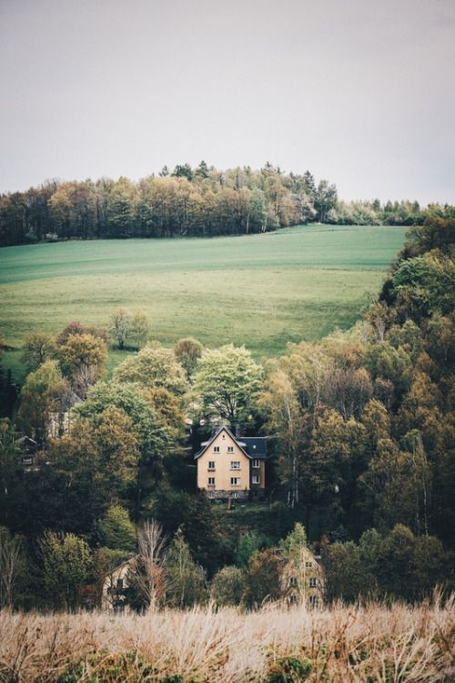 Photo of Nella foresta #Caldo – idee fai-da-te in legno