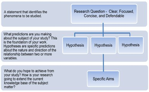 Research Process Hierarchy Tips For Formulating A Research Question And Study Design Research Question Research Methods This Or That Questions