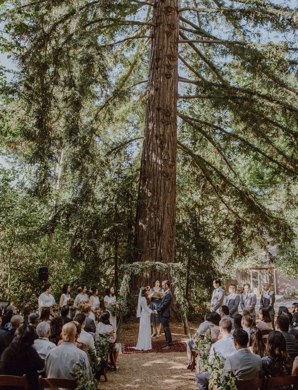 15 Incredible Forest Wedding Ceremony Ideas