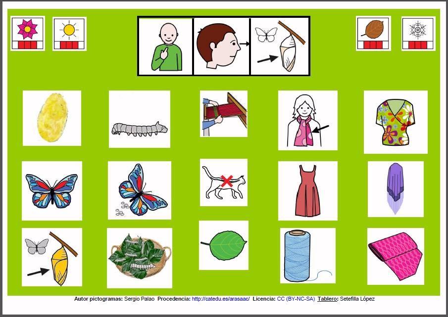 MATERIALES - Tableros de comunicación de 12 casillas: Crisálida.    Tableros de comunicación de 12 casillas acerca de animales concretos.    http://arasaac.org/materiales.php?id_material=970