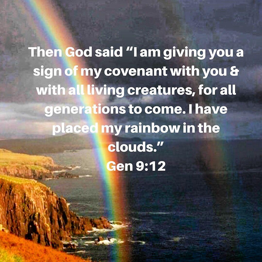 Rainbows God S Reminder Of His Faithfulness Rainbow Quote Rainbow Promise Rainbow Bible