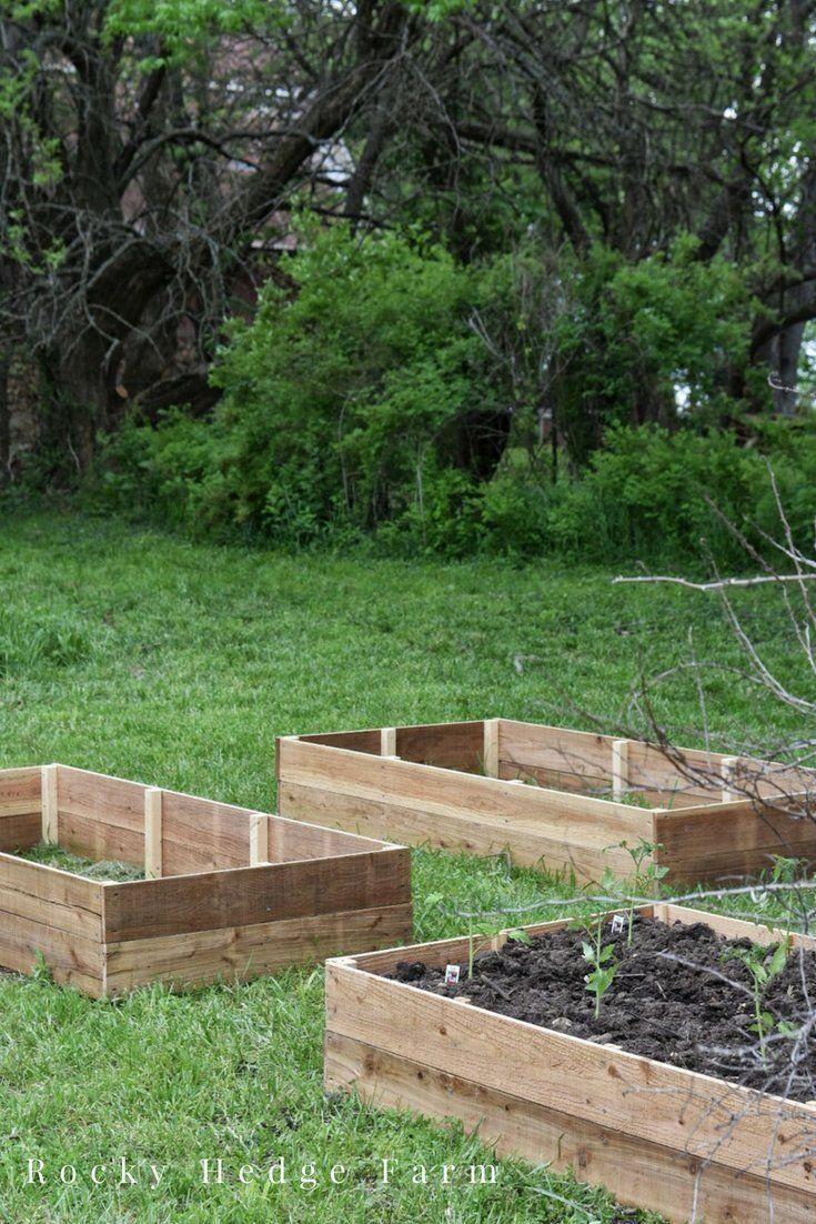 Cedar Raised Vegetable Garden Beds - Rocky Hedge Farm # ...