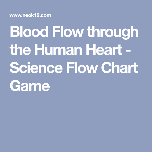 Blood Flow Through The Human Heart Science Flow Chart Game Hs