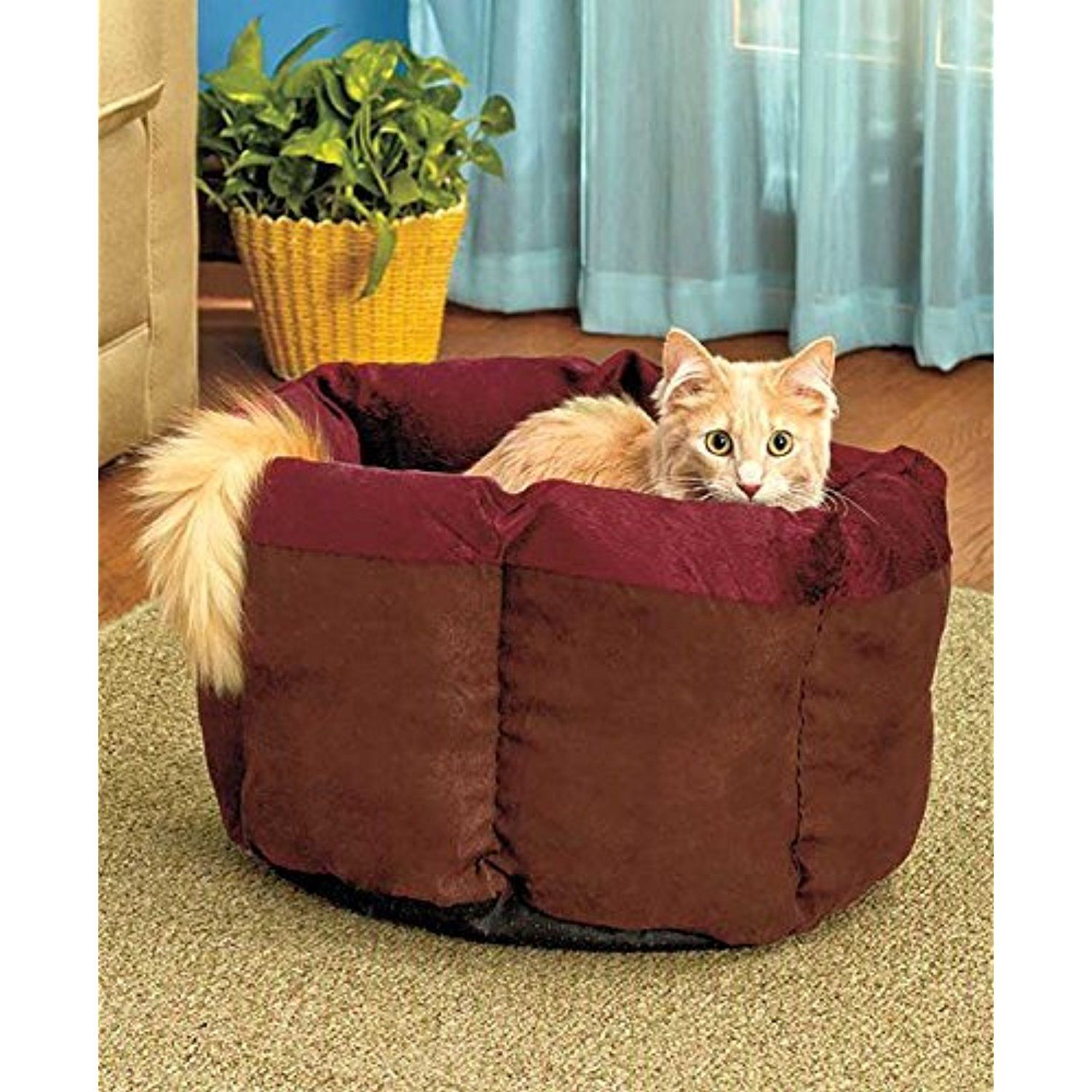 Soft Plush Cat Cuddle Bed (Burgundy/Chocolate) *** To view