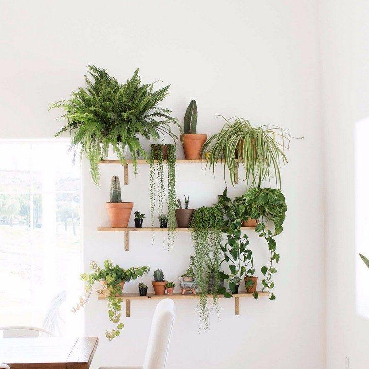 Fabriquer Un Mur Vegetal Interieur Ou Tableau Vegetal Toutes Les Etapes Pas A Pas Deco Plantes Interieur Mur Vegetal Interieur Etagere Deco