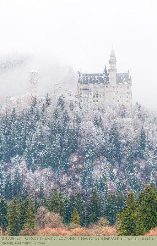 Neuschwanstein Castle In Winter Fussen Bavaria Germany Europe Neuschwanstein Schloss Neuschwanstein Winter