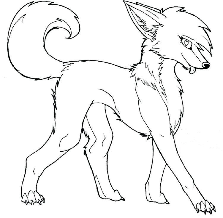 arctic fox coloring page # 61