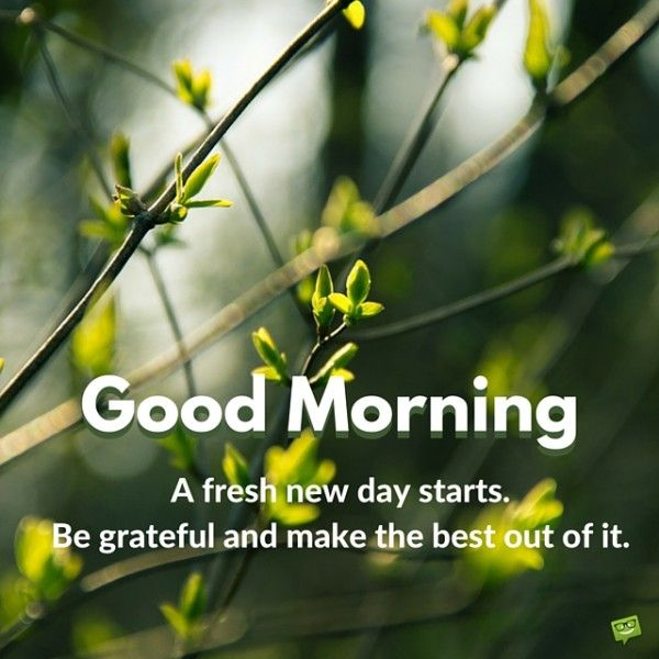 A New Day Starts Good Morning Pics Good Morning Cards Good Morning Image Quotes Morning Pictures