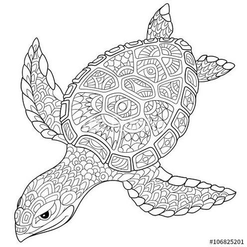 Mandala Zentangle Turtle Coloring Page Turtle Coloring Pages