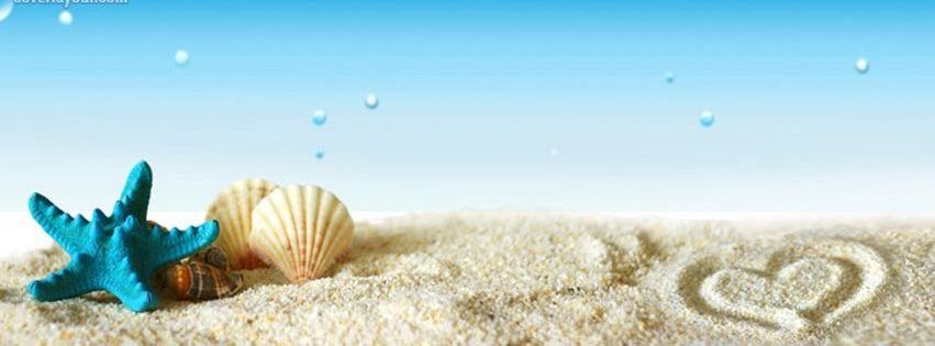 0633441672e7 Beach Sand Seashells Facebook Timeline Covers Facebook Covers - myFBCovers
