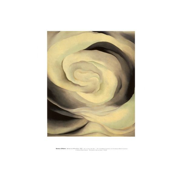 Abstraction White Rose, 1927 Wall Art Print ($18) ❤ liked on ...