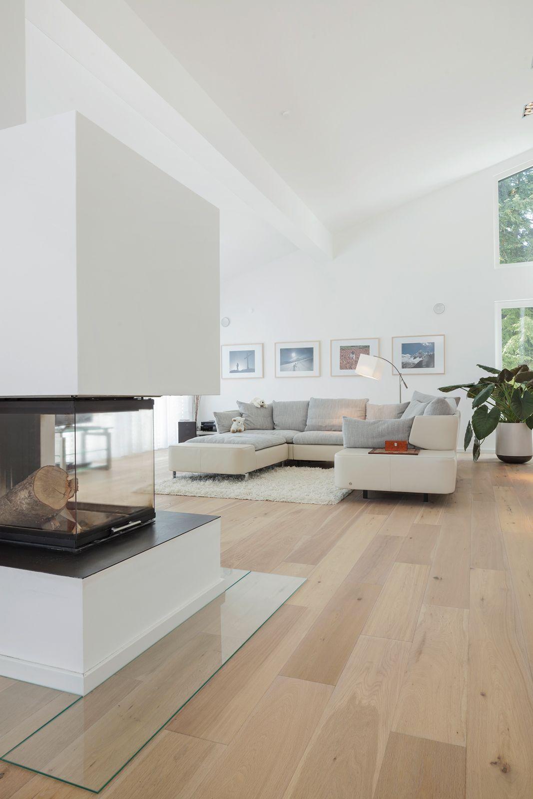Wohnzimmer des modernen interieurs des hauses kamin mit drei seiten glaseinsicht  iwmh  pins für js  pinterest