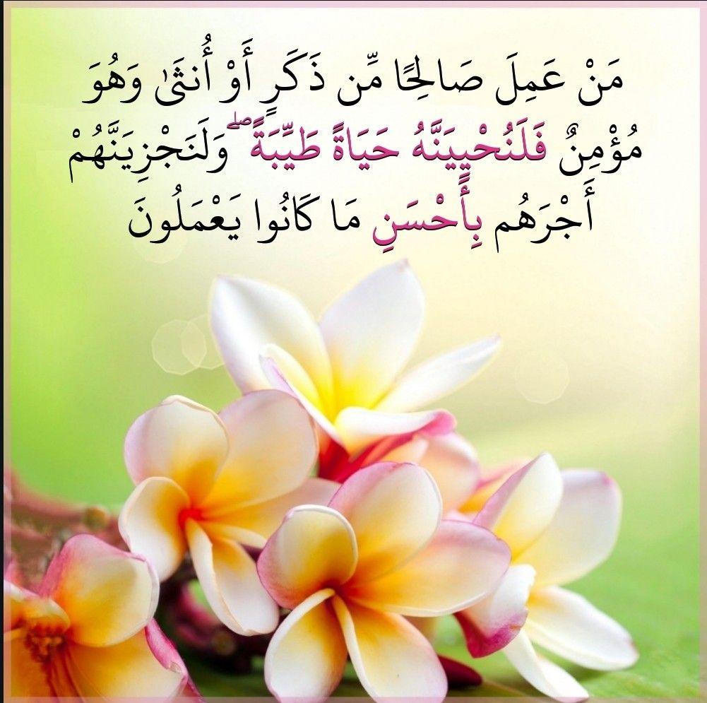 قرآن كريم آيه من عمل صالحا Prayer For The Day Prayers Peace