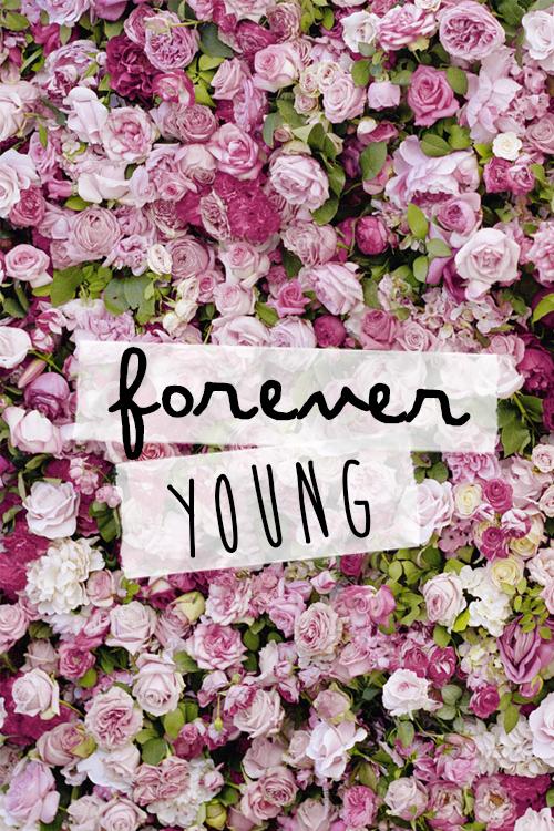 fondos de flores tumblr  Buscar con Google  fondos  Pinterest