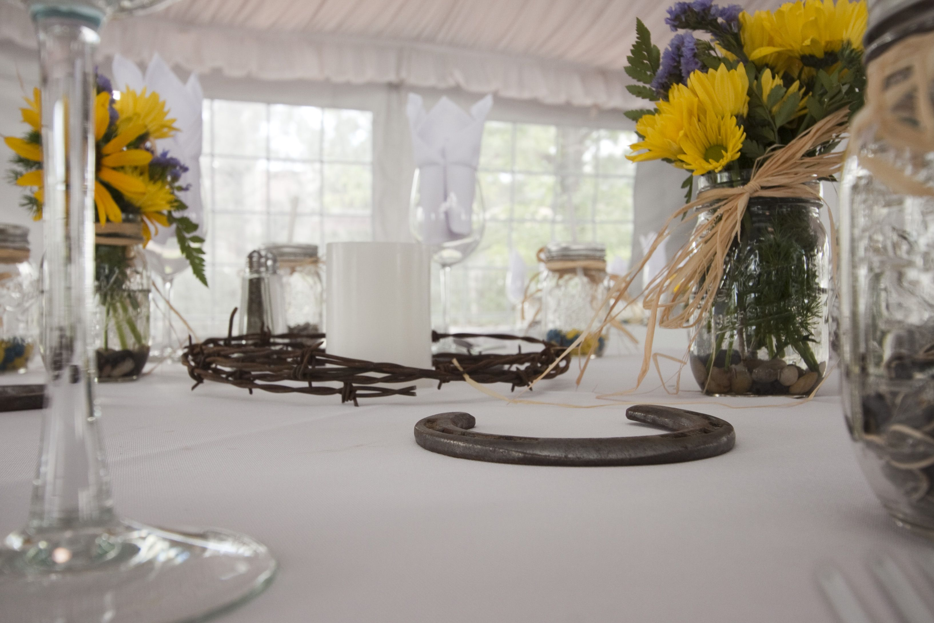 Horseshoe country western table setting