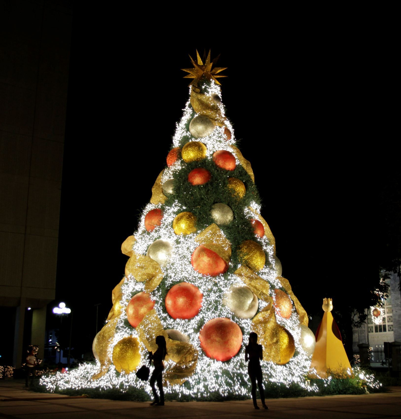 The worlds best christmas trees santo domingo dominican the worlds best christmas trees santo domingo dominican republic a display from 2011 sciox Image collections