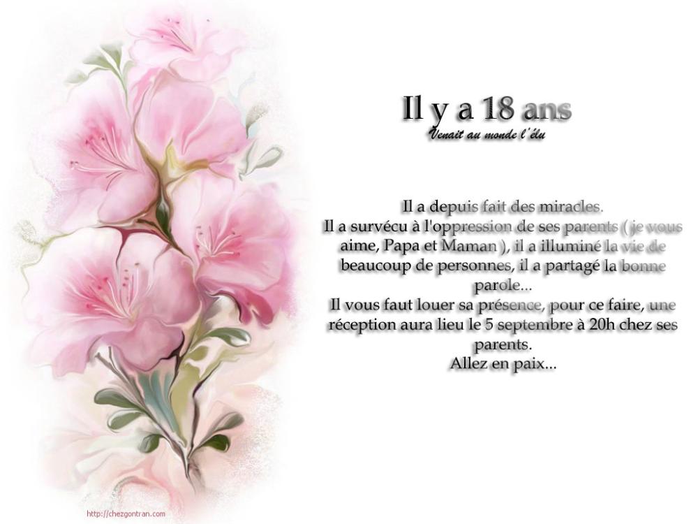 elegant invitation anniversaire 18
