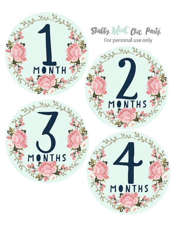 18 Month Stickers: Printable Baby Monthly Milestone. Gift For Baby. Gift For