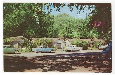 Austinu0027s Resort Cabins Cars Clear Lake Highlands California 1950s Postcard