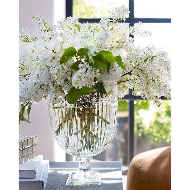 """White lilacs: #RLHome's Marion vase"