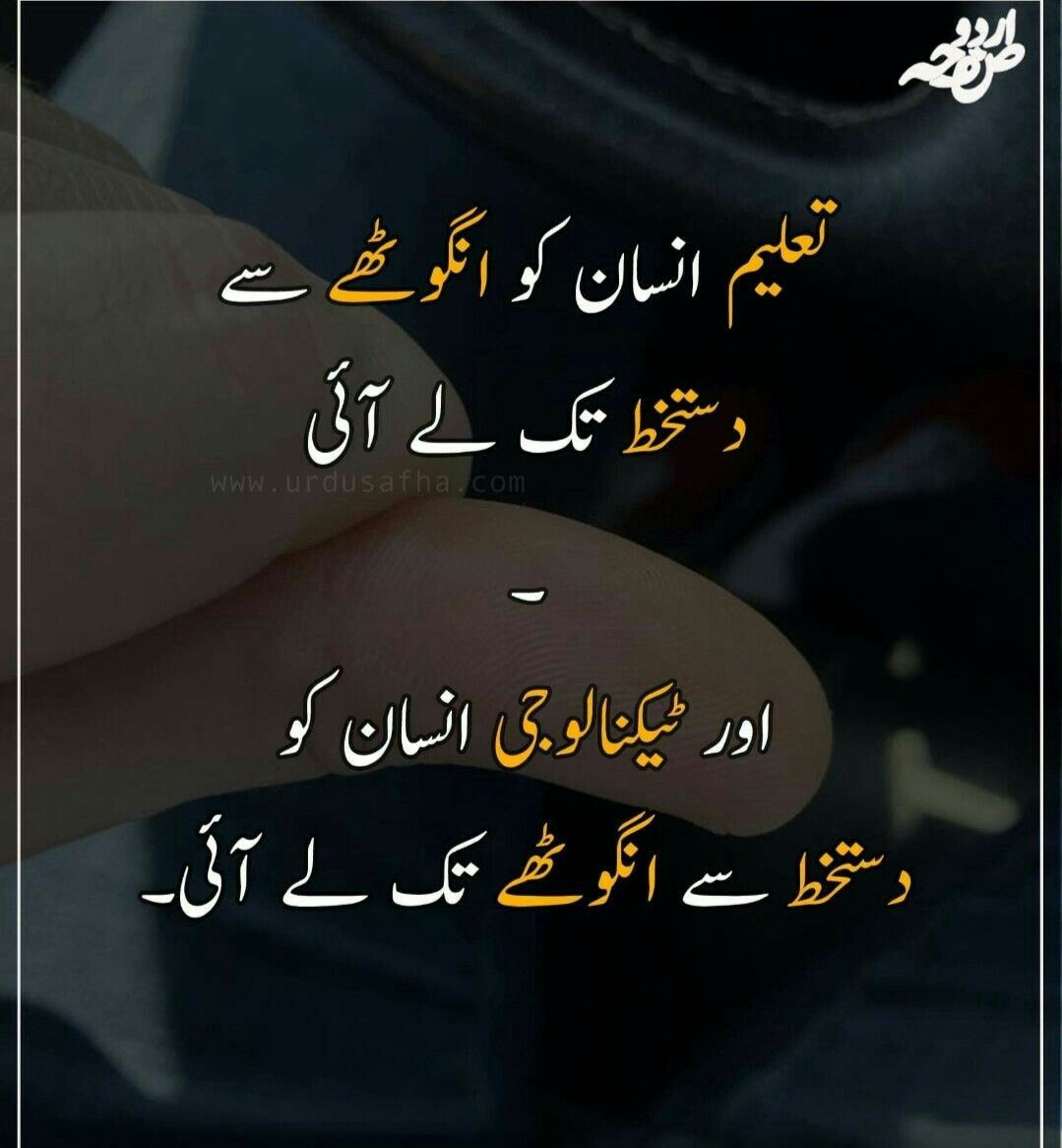 Bilkul Durust Urdu Funny Quotes Funny Quotes In Urdu Urdu Words