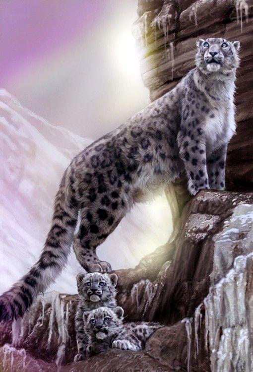 image animaux fantasy