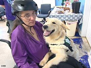 Seizure Alert Dogs Give New Freedom To Epilepsy Sufferers Colise