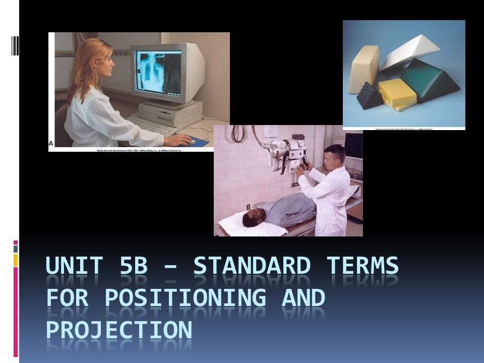 Introduction  Radiographers must possess a thorough knowledge of anatomy and medical terminology. -  ppt download