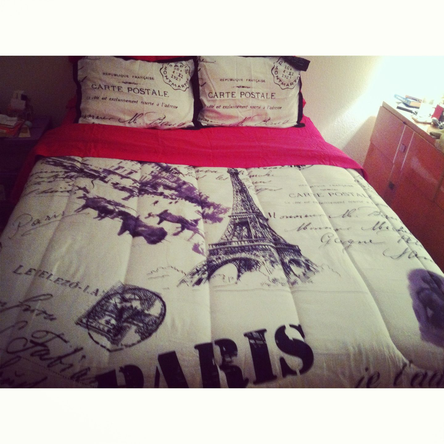 my new paris bedspread from anna's linen. (pink sheets are from