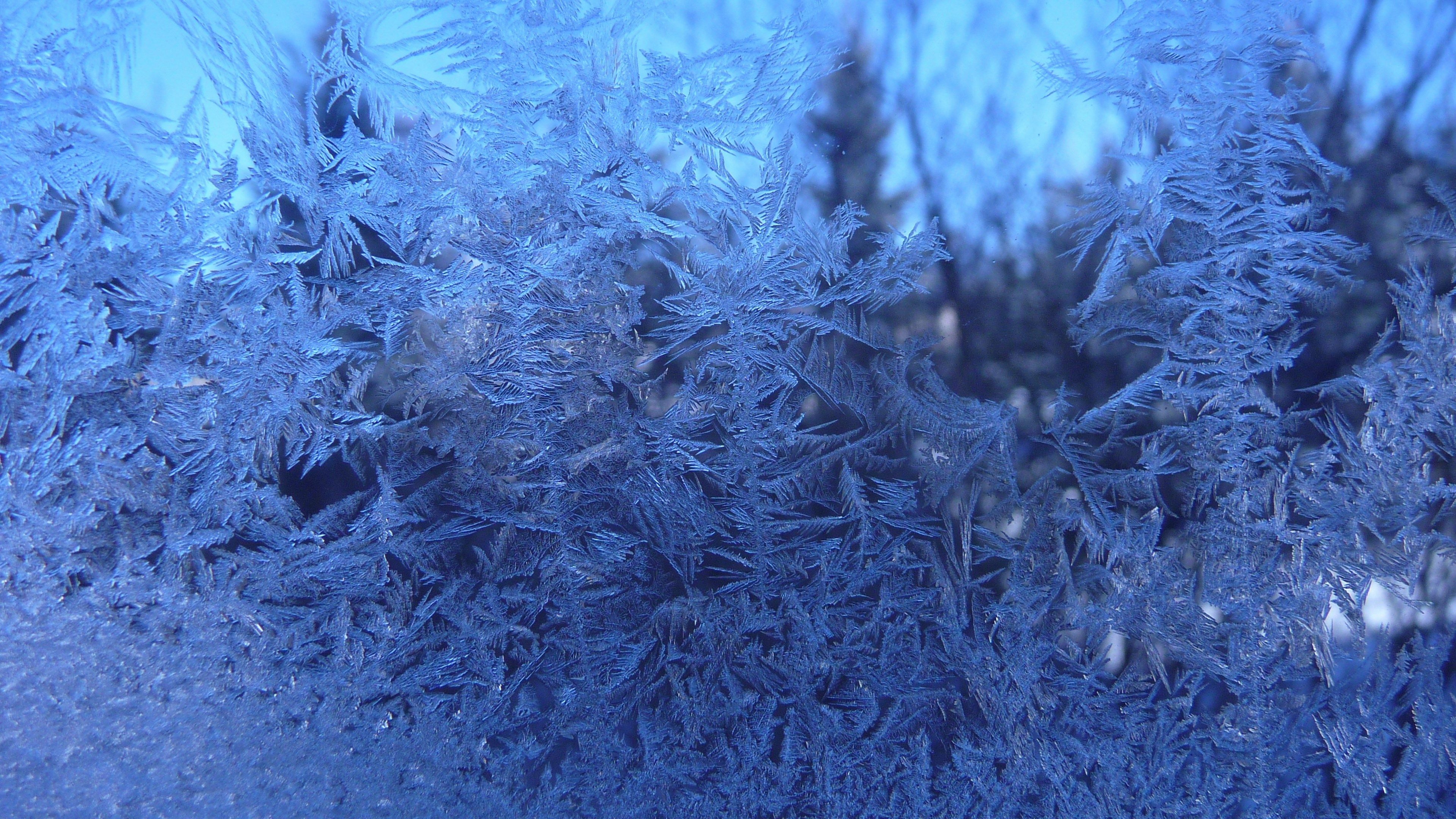 frosted glass window picture