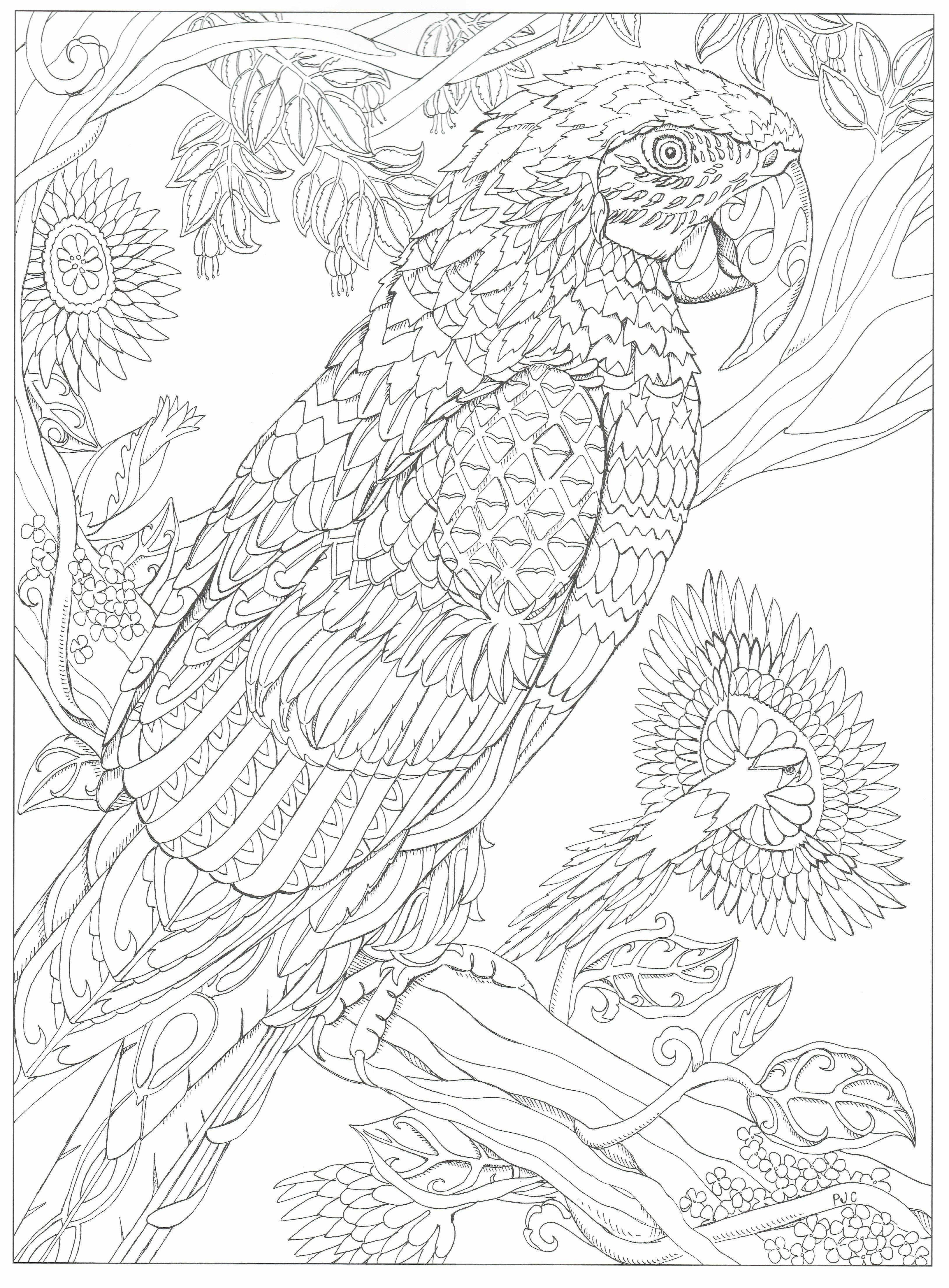 Pin On Adult Coloring Pages To Save And Print