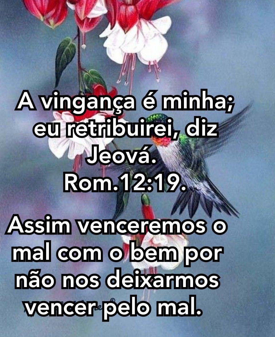 Pin De Marleide Santos Em Amo Jeova Mensagem De Jeova Palavras