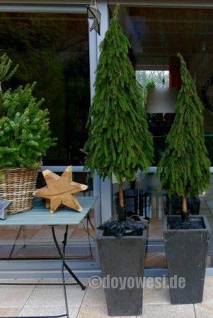 Bäume aus Tannenzweigen binden - Karin Urban - NaturalSTyle