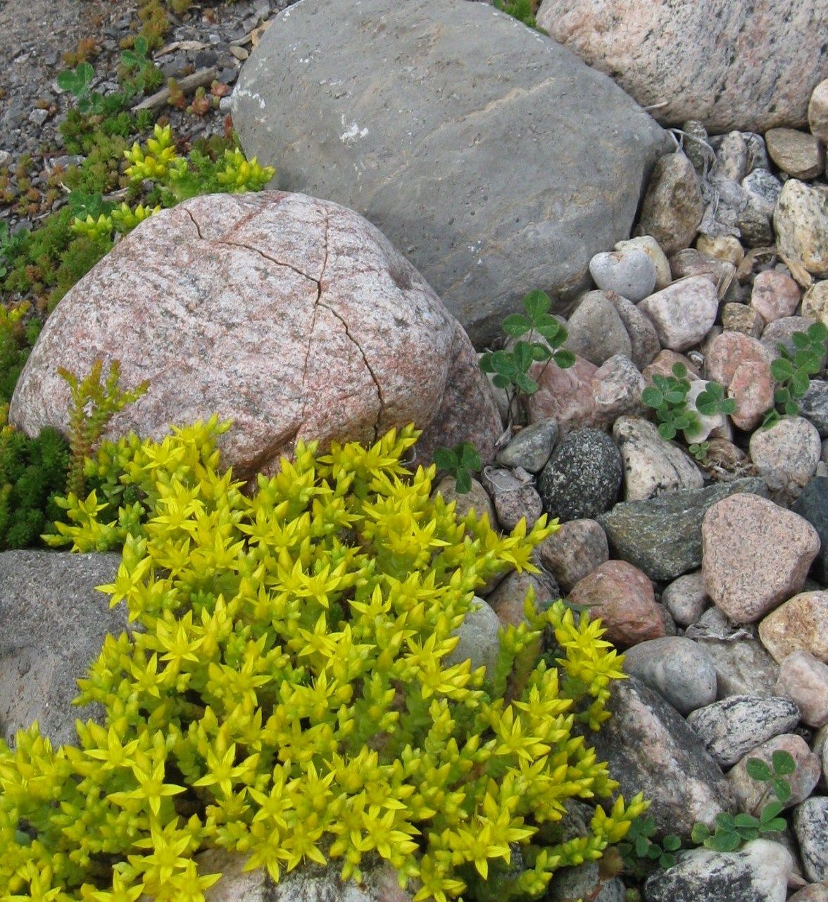 Landscaping With River Rock Dry River Rock Garden Ideas: Round River Rocks And Flat