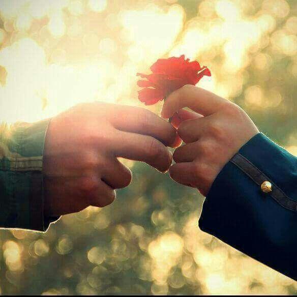 Pin By Kokulu Gul On صور شخصية بنات Hands Holding Hands