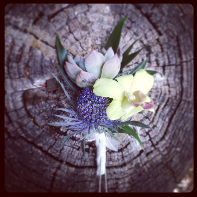 Succulent, thistle, and orchid boutonnière Orchid