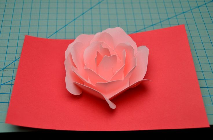 Rose Flower Pop Up Card Tutorial Creative Pop Up Cards Pop Up Card Templates Pop Up Flower Cards Pop Up Flowers