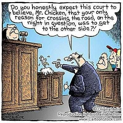 Wordpress Com Chicken Humor Cartoon Chicken Ridiculous Pictures