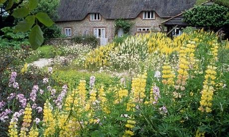 Hampshire — Dan Pearson | Dan pearson, English garden ...