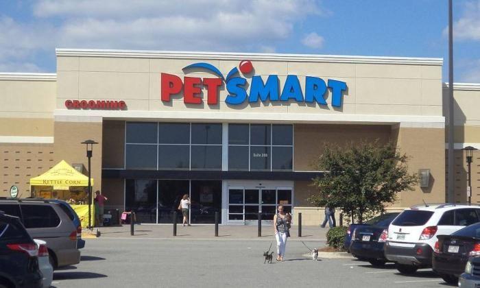 Pin by Nick Skeba on Petsmart Coupons Off Grooming Pet